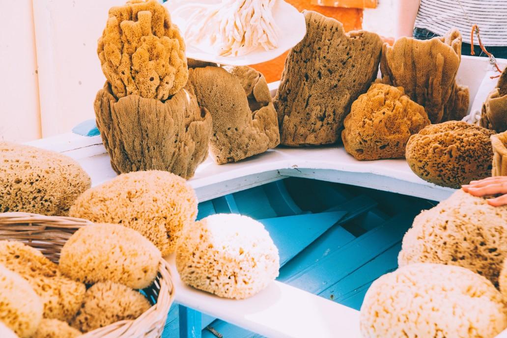 L'éponge de mer: toutes ces utilisations dans notre quotidien